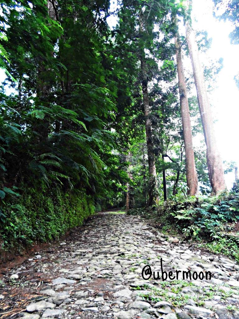 Jalan menuju Curug Sawer.. Bersih ya.. :')