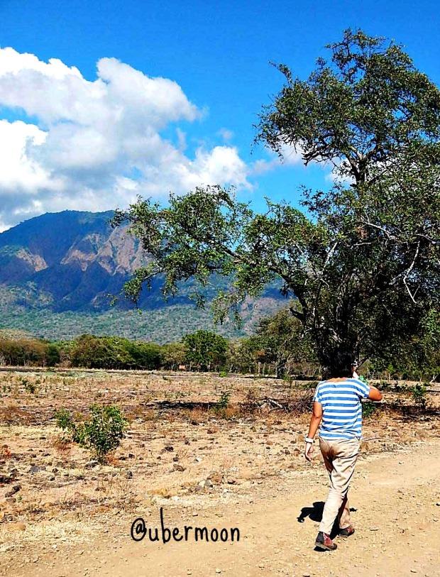 Taman Nasional Baluran. Belum setahun bekerja. :p
