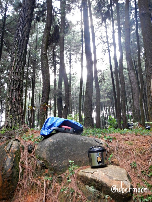 power-plug-gunung-pancar