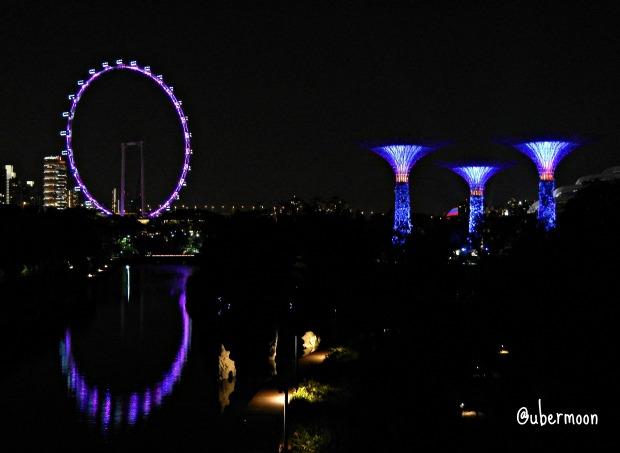 nightshot-singapore