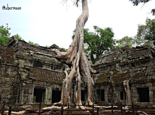 ta-phrom-siem-reap-cambodia