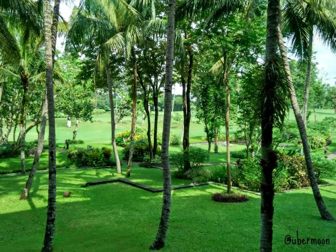 garden-view-hyatt-regency-yogya
