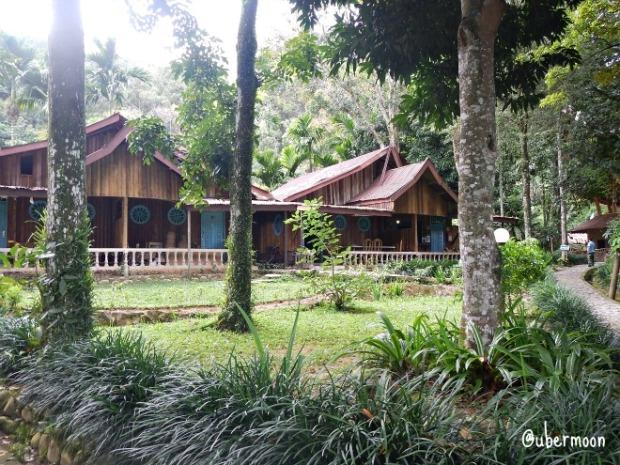 ecolodge-bukit-lawang