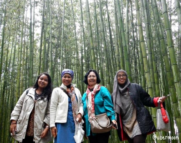 arashiyama-bamboo-grove-kyoto