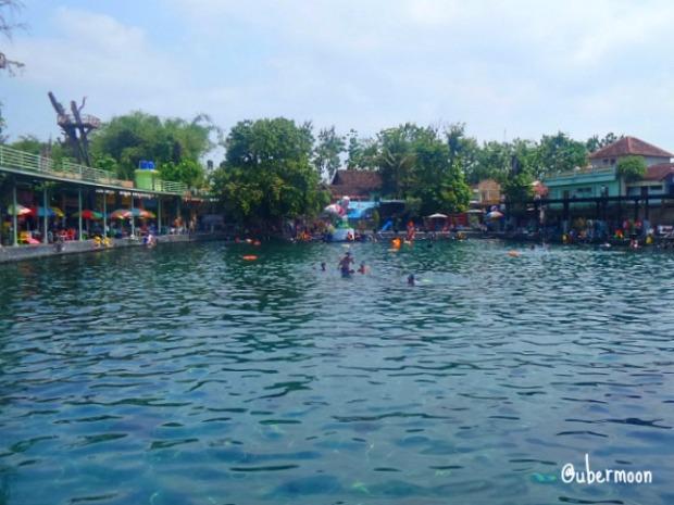 kolam-umbul-ponggok