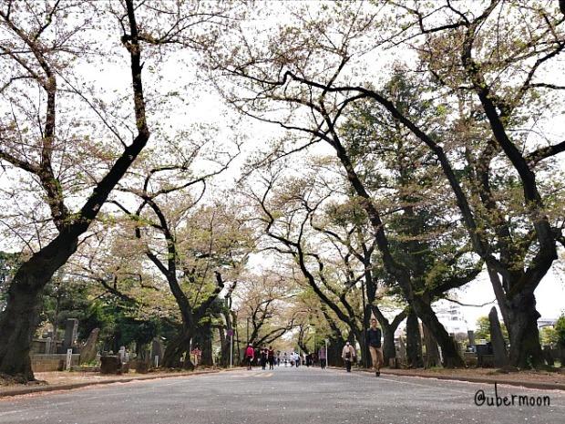 yanaka-cemetery-tokyo-nippori