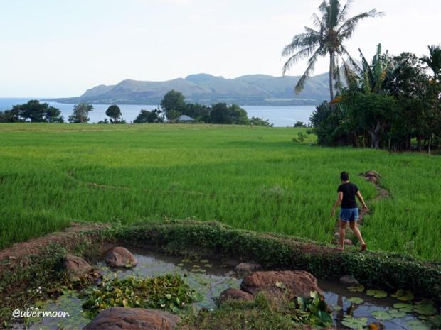 pemandangan-desa-dintor