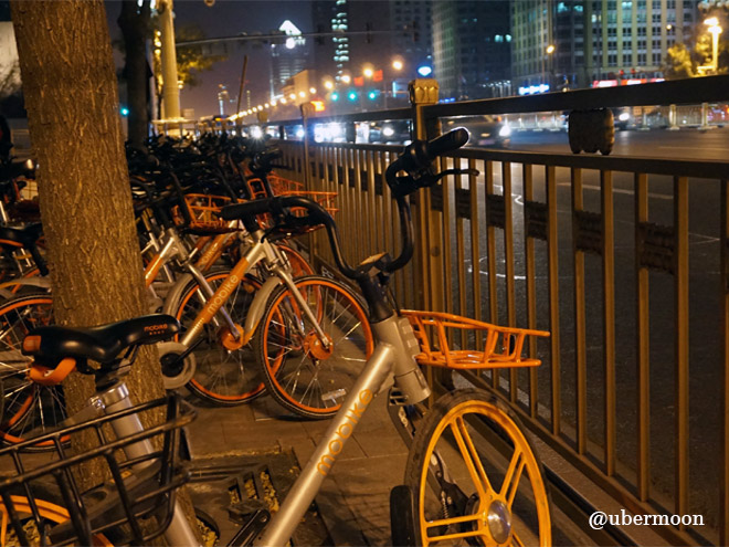 bicycle-in-beijing