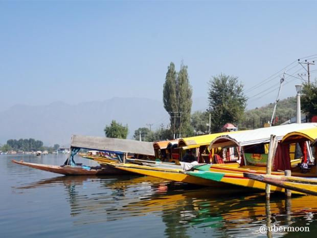shikara-dal-lake-srinagar