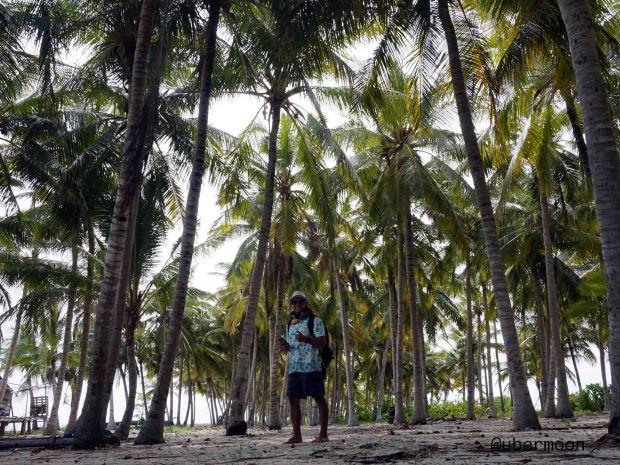 kebun-kelapa-di-tarupa-kecil-taka-bonerate