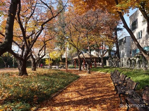 daegu-park