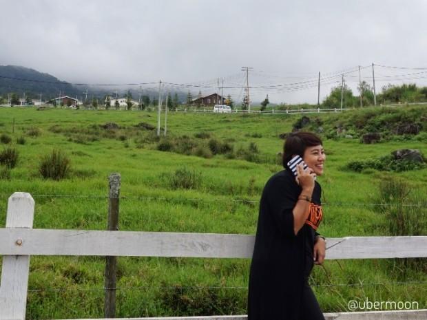 desa-farm-kota-kinabalu-view