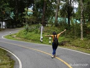 traveler-in-thailand